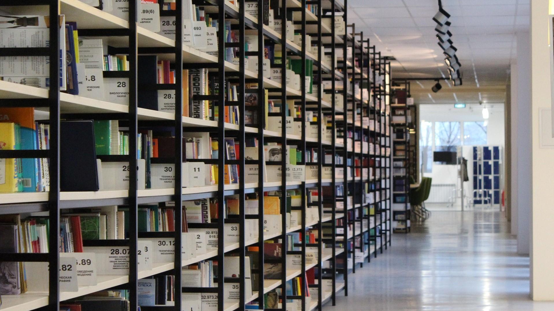 Lavorano Spesso Alle Finestre bibliotecari resistenti al virus – emergenza cultura